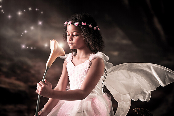 Fairy and Elf 1