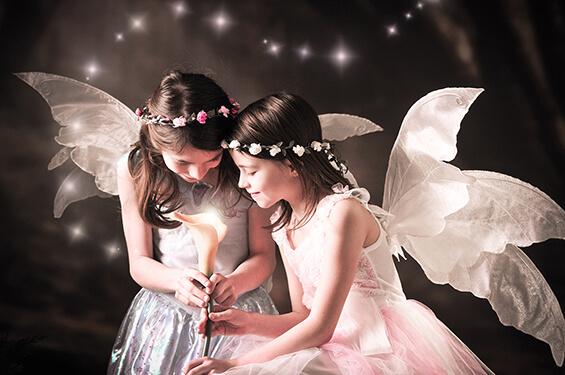 Fairy and Elf 3