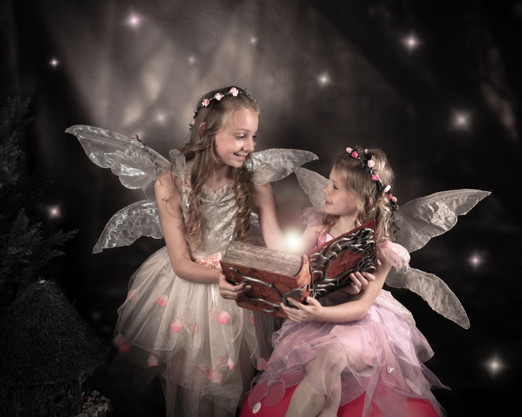 Fairy and Elf 3