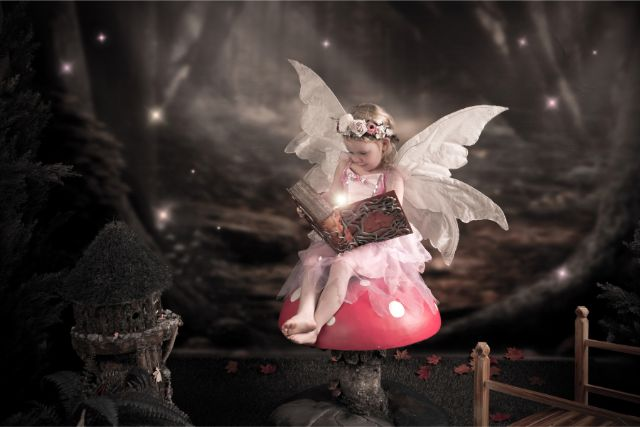 Images Unlimited - Fairy and Elf Photography 38