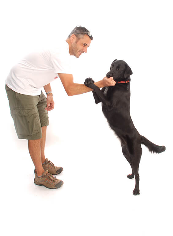 Pet Photography 1